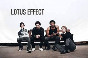 Lotus Effect